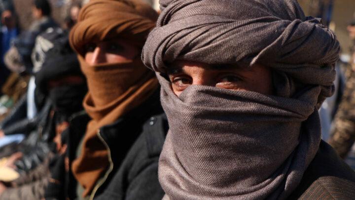 Талибы прибыли в Москву с граблями, и режим Путина наступил на них